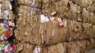 PAN Piles Of Cardboard Waste