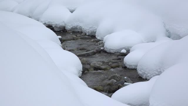 Pillow Brook