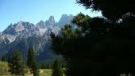 HD-Kiefer in der hohe Berge auf der Vorderseite