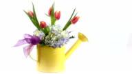 Pink Tulip arrangement in a watering tin.