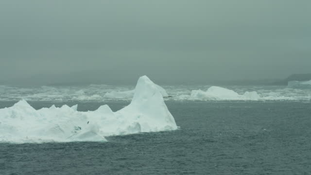 Pinnacle Iceberg On Arctic Inlet