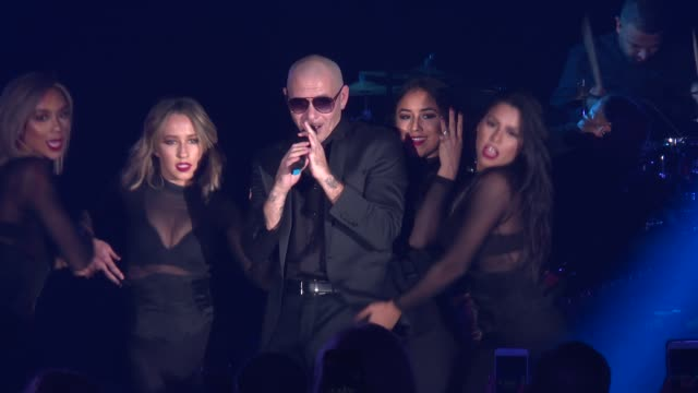 SPEECH – Pitbull greets the crowd at Daniel E Straus CareOne Starry Night Masquerade For Puerto Rico at Skylight Clarkson Sq on October 19 2017 in...