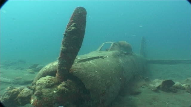 WWII plane on sea floor, track towards cockpt.  Kimbe Bay, West New Britain, PNG