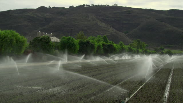 WS PAN Plowed field with sprinklers, Santa Rosa Valley, California, USA