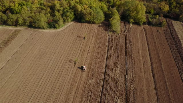 Plowing day 4k
