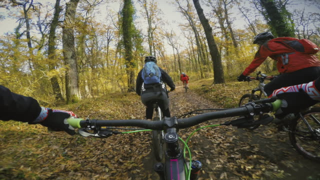Point of view POV: group of friends mountainbike in forest