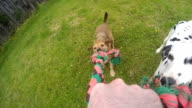Point of View Slo-mo Tug of War