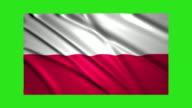 Poland flag waving,loopable on green screen