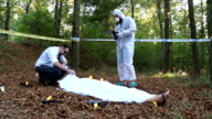 Police and forensics on crime scene