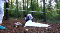 Police and forensics on murder scene