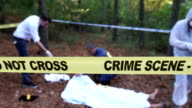 Police investigation in the woods