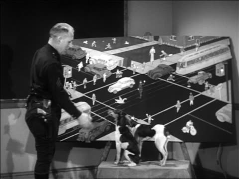 B/W 1938 policeman + dogs standing in front of large diagram of street corner in front of classroom