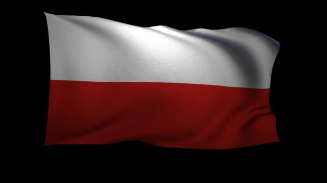 CGI Polish flag waving against black background