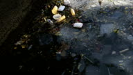 Polluted river filled with garbages