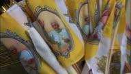 Pope benedict XVI on flags, 2008
