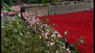 Poppy installation at the Tower of London ENGLAND London Tower of London EXT Visitors taking photographs of poppy installation outside Tower of...