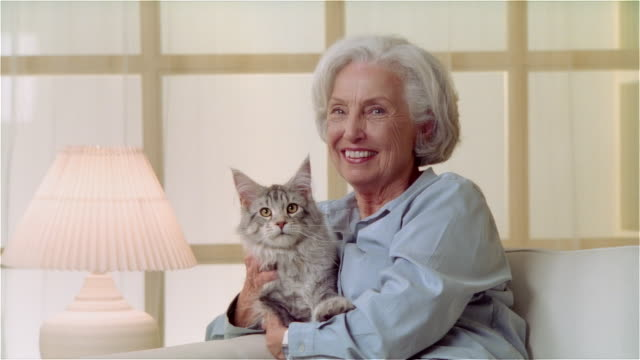 MS ZI portait woman holding Maine Coon cat