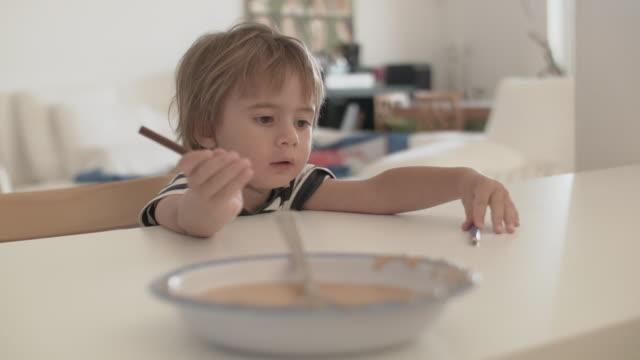 Portrait of a 2 year old boy