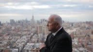 portrait of a business executive looking over Manhattan