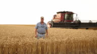 WS DS Portrait of Farmer in Wheat Field with Large Combine / Oyster, Virginia, USA