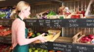 Portrait of female entrepeneur in organic shop