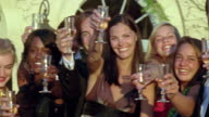 CU, PAN, Portrait of friends toasting with champagne, Saint Ferme, Gironde, France