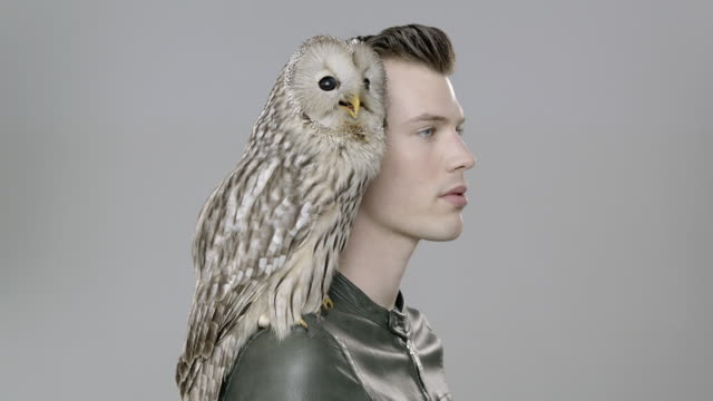 Portrait of man with Owl perched on shoulder looking up to camera