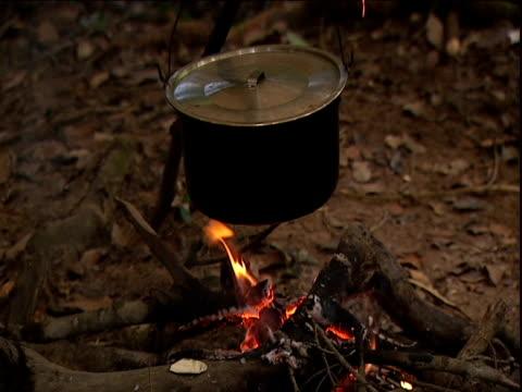 Pot cooks on jungle campfire Amazon Rainforest Venezuela