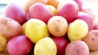 potatoes of different varieties