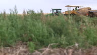 Pototo Harvester Moves Thru Frame R-L