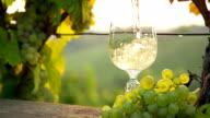 HD SUPER SLOW-MO: Pouring White Wine