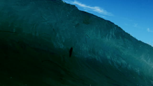 Powerful clean wave POV as wave breaks over camera on shallow sand beach in the California summer sun. Shot in slowmo on the Red Dragon at 300FPS.
