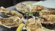 CU R/F Prepared oysters on plate / Port de Soller, Mallorca, Baleares, Spain