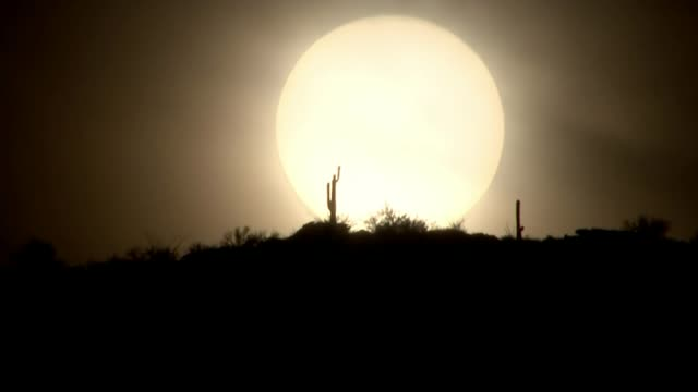 Polls show race is closer than ever USA EXT SPEEDEDUP TIME LAPSE footage of silhouette of desert landscape and sun rising / wide shot of residential...