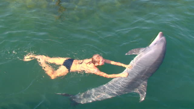 pretty girl playing with a great dolphin