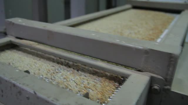 HD : Process of Rice Mill Industry