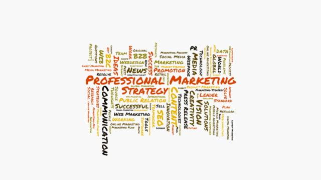 Professional Marketing Strategy word cloud