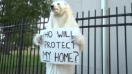 Protesters outside Hofstra University prior to the presidential debate / Animal activist wearing polar bear costume holding sign that reads 'Who will...