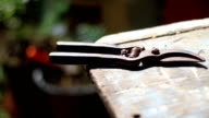 pruning shears on the wooden table