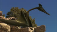CGI, CU, LA, Pterosaurs perching on rock