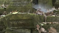 Pull focus on a large spiders web next to carved stone columns at the Bayon temple in Angkor.