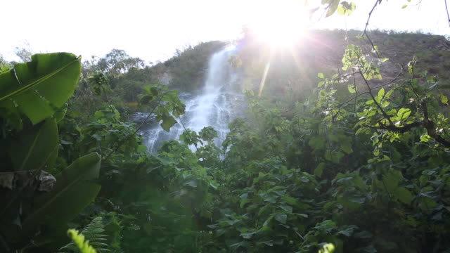 Pull focus tilt up to jungle waterfall,  sunburst behind