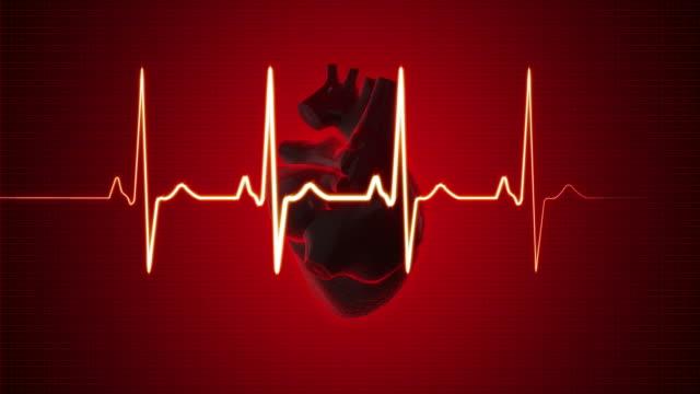 EKG elettrocardiogramma con cuore umano/ad anello
