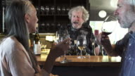 Push-out shot of a couple tasting wine in a bar