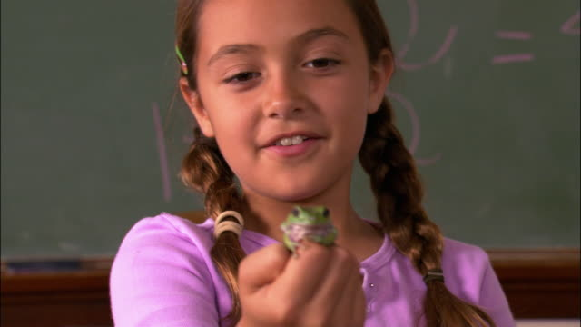 Rack focus close up zoom out girl holding small frog on her finger for show and tell