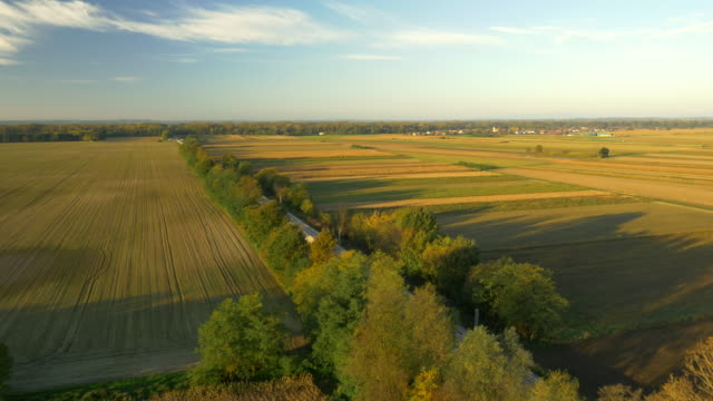 AERIAL Railroad Tracks In The Countryside
