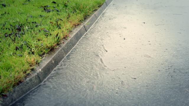 MONTAGE: Regen