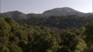 Rainforest and hills, Mount Rungwe, Tanzania
