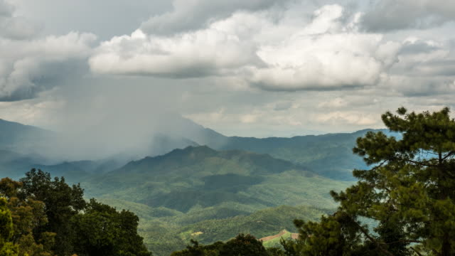 Raining in the forest with high mountain , doi luang chiang dao , chiang mai Thailand