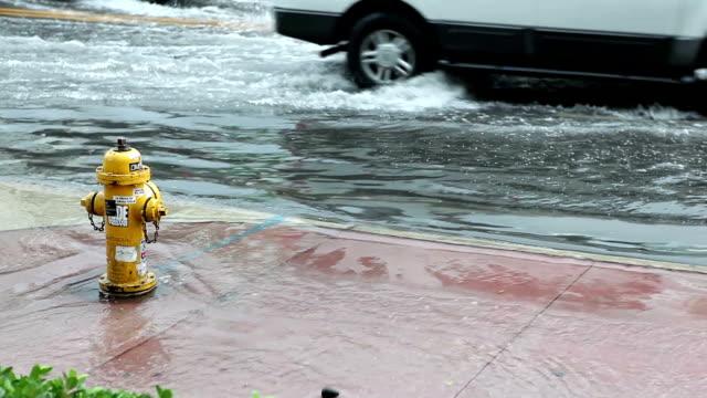 Giornata di pioggia a Miami